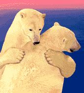 imagenes gif animados de amor gifs animados de abrazos gif de amor imagenes animadas