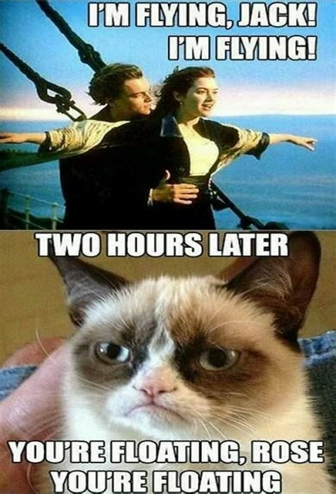 Grumpy Cat Coma Meme - titanic meme