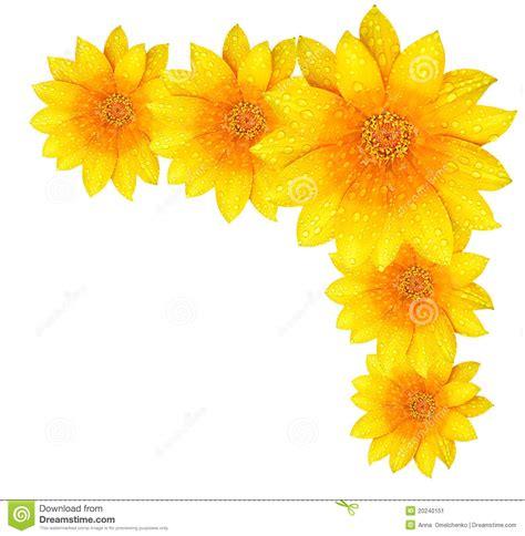 border design flower yellow yellow flower borders design www imgkid com the image
