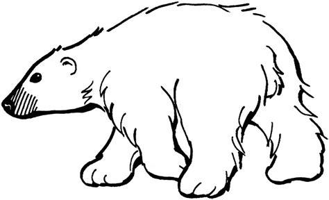imagenes para pintar oso dibujos de osos para colorear y pintar