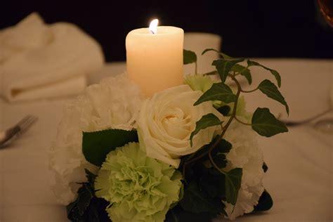 wallpaper bunga gelap gambar menanam putih daun bunga gelap mawar hijau