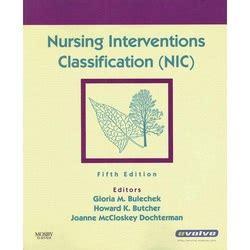 Paket Nursing Interventions Classification Nic Ed 6 standardized nursing languages doodle sundae