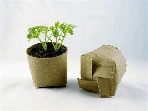 How To Make Paper Plant Pots - toilet paper roll planters diy projects