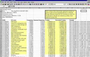 Sample Excel Spreadsheet Gallery For Gt Excel Spreadsheet Examples