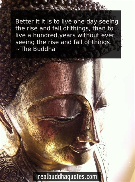 7 Things On The Rise by Awakening Real Buddha Quotes