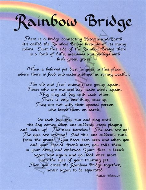 free poems printable rainbow bridge cat poem