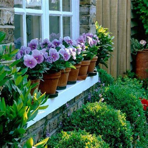 decorar con plantas el baño flores para sembrar en oto 241 o plantas