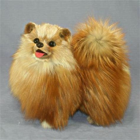 pomeranian stuff ranran rakuten global market pomeranian stuffed plush costume oversized in the