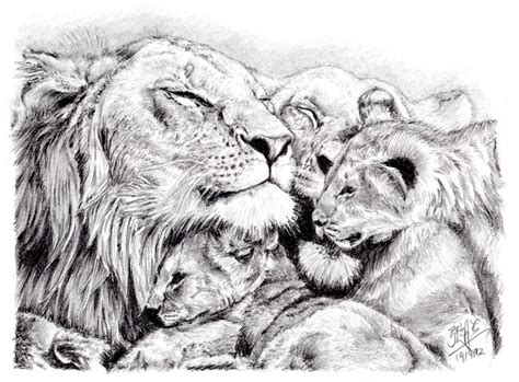lion family tattoo gallery quick pencil sketch of a lion s family by chaseroflight on