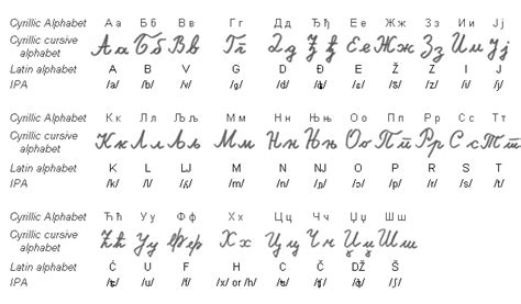 lettere in cirillico alfabeto serbo cirillico