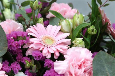 Blumen Die Lange Halten by Mit Der Richtigen Pflege Halten Schnittblumen Deutlich