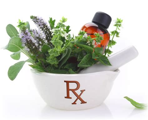 Herbal Stimulant herb and prescription interactions sacred plant