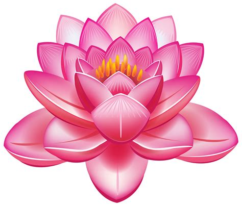 what is a lotus flower clipart flowers lotus flower png clipart best web