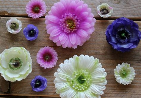 drijfkaarsen bloemen kopen trots op twente huis meer in enschede life by rosie