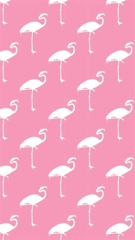 iphone wallpaper flamingos silver spiral studio