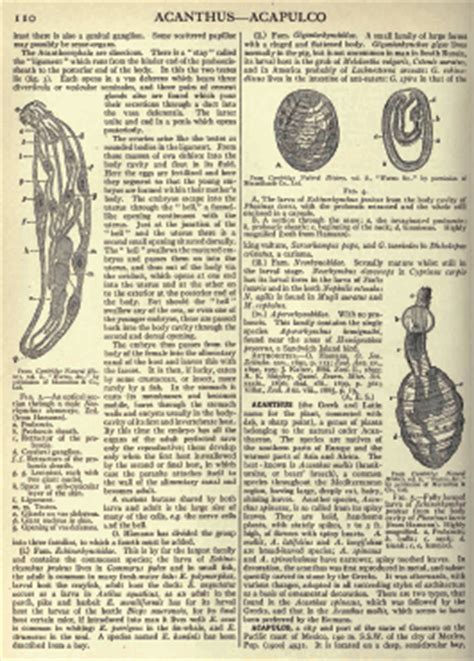 newspaper history facts britannica 1911 encyclopedia britannica 11th edition dvd antique reference book in pdf ebay