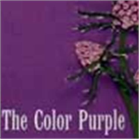 color purple chapter summary the color purple quotes