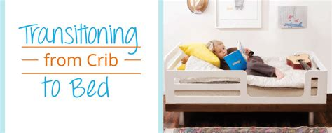 Transition From Family Bed To Crib Transition From Crib Transition From Family Bed To Crib