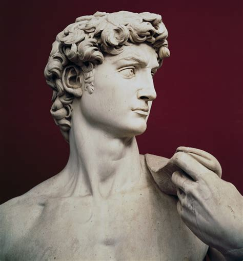 michelangelo david statue david michelangelo buonarroti as art print or hand