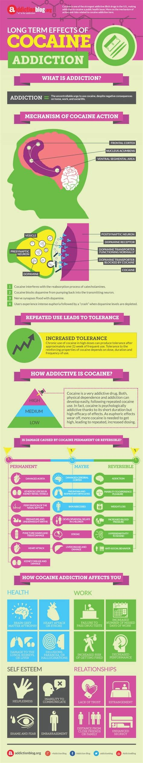 Dangers Of Repeated Detox by 1000 Ideas About Side Effects Of Cocaine On