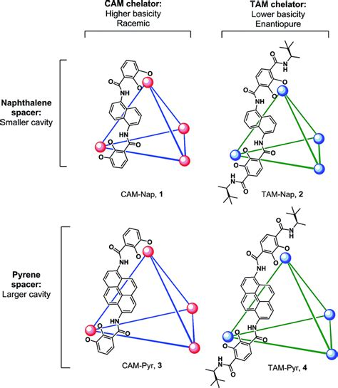 impact of the supramolecular structure of cellulose on the the effect of host structure on the selectivity and