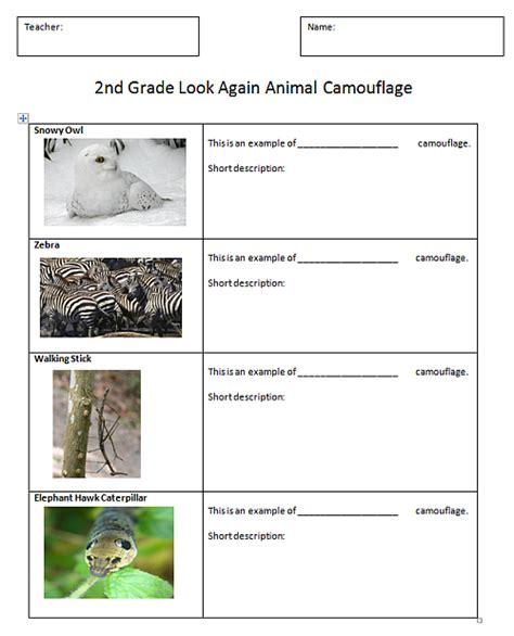 Animal Adaptation Worksheets by Animal Adaptations For Worksheets Free Worksheets