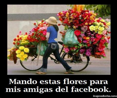 imagenes lindas de amistad para compartir en facebook im 225 genes bonitas con flores y frases de amistad para