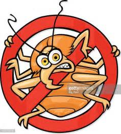 bed bug cartoon bedbug stock illustrations and cartoons getty images