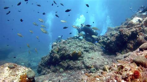 dive sicily diving in sicily 2013