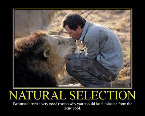 friday funny natural selection a touch of cass