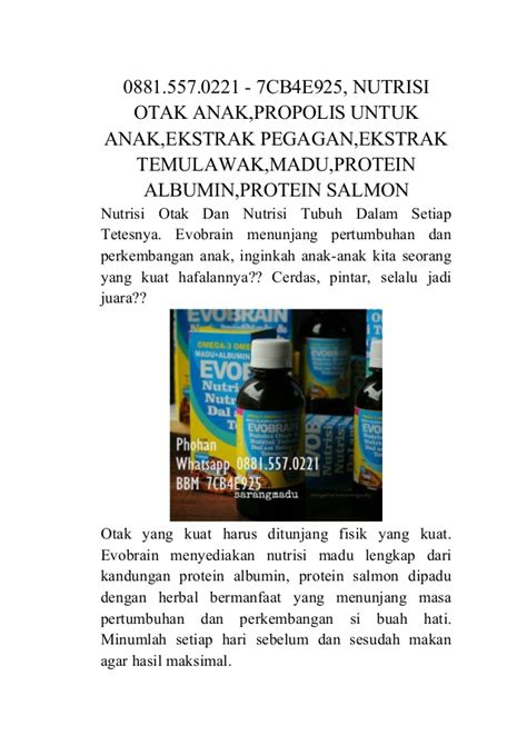 Madu Nutrisi Otak Tubuh Evobrain 0881 557 0221 7cb4e925 nutrisi otak anak nutrisi tubuh
