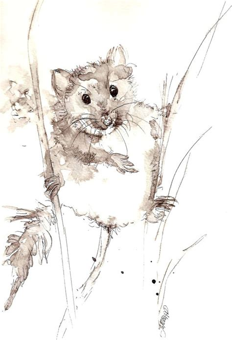Mouse Pen Drawing 358 best a mouse in my house images on mice
