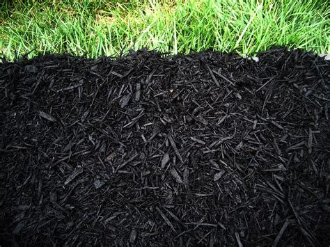top 28 definition mulch d 233 finition tourbe vetofish soil definition youtube house made