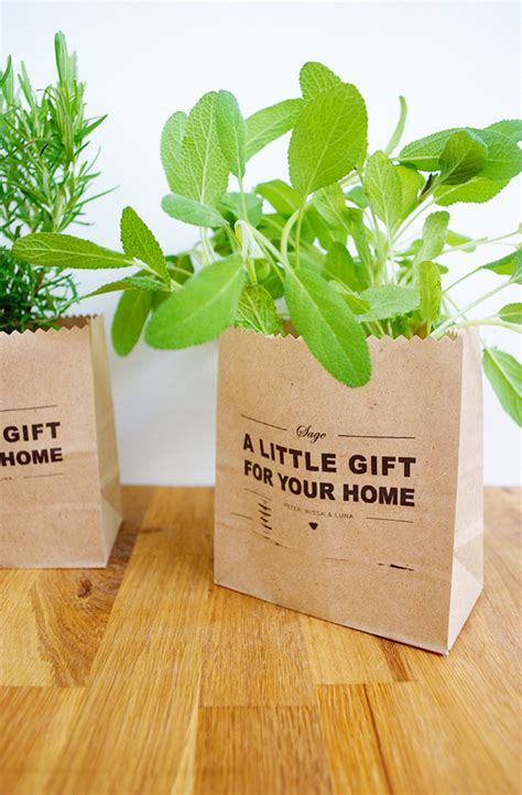Garden In A Bag Gives The Gift Of Fresh Herbs by Diy Garden Starter Gift Bags The New Domestic