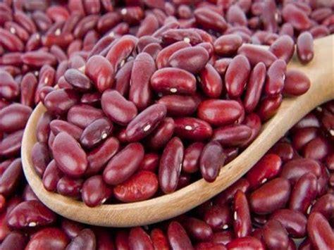 manfaat kacang merah bagi kesehatan kesehatan