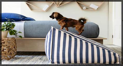 gabbia per cani da interno cucce da interno e letti per cani viva la morbidezza