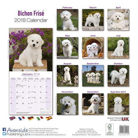 bichon frise desk calendars bichon frise calendars 2018 on europosters