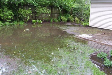 backyard flooding problems dry stream beds gain momentum as ideal drainage solution