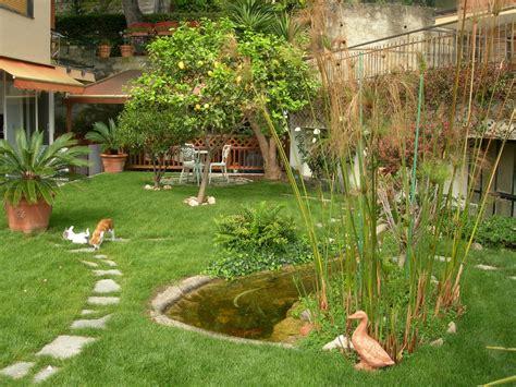 laghetto da terrazzo benza laghetti da giardino cascate e ruscelli artificiali