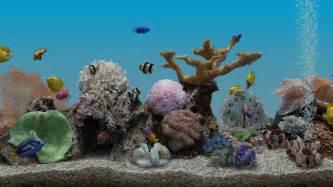 Marine aquarium 3 2 applications android sur google play