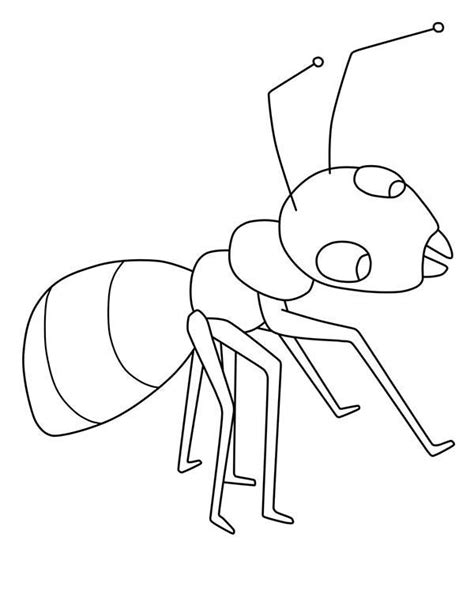 picture of ant for kids www pixshark com images