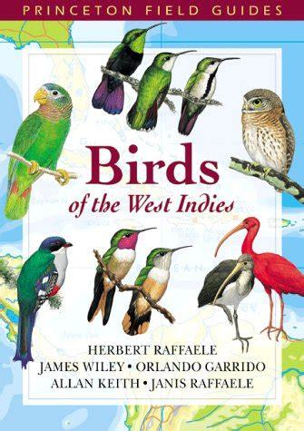 libro observar las aves bird gu 237 as para observar aves en la hispaniola