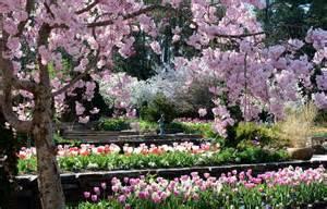 Duke Botanical Gardens Historic Gardens Duke Gardens
