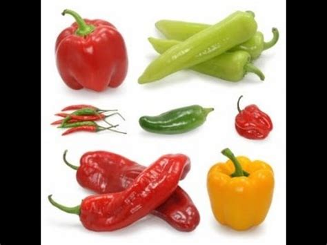 2 vegetables to avoid nightshade vegetables to avoid