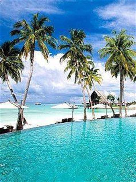 beautiful paradise mobile wallpaper mobile