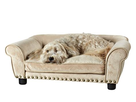 best pet beds best dog bed