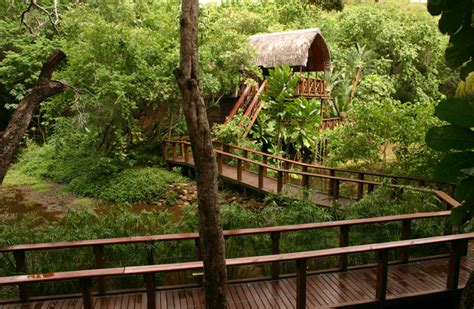 luxury forest lodges south africa exclusive getaways