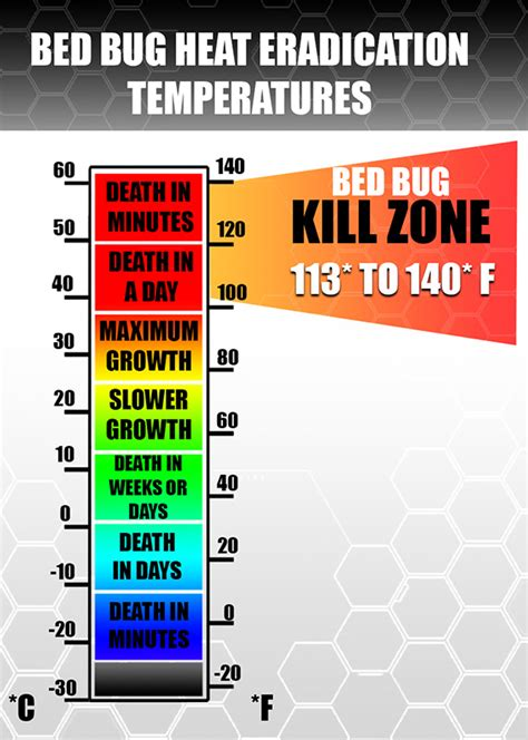 what temp kills bed bugs tucson bed bug heat rental kill bed bugs like the pros