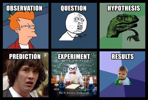 Science Memes - steps of the scientific method