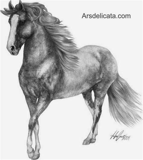 imagenes de toros para dibujar a lapiz dibujos de caballos con lapiz jpg 768 215 862 indios